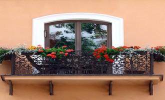 8 plantas para el balcón de tu casa