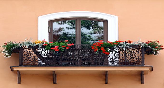8 plantas para el balc n de tu casa blog cci for Plantas para balcones